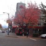 Vancity Pizza in Vancouver