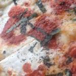 Pizzeria Molto in Fairfield, CT