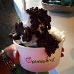Pinkberry in Aventura