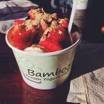 Bamboo frozen yogurt cafe in Mechanicsburg, PA