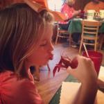 Sevin's in Farmerville