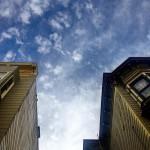 Blue Fig in San Francisco, CA