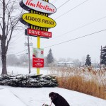 Tim Horton's in Sarnia