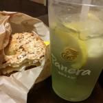 Panera Bread in Orlando