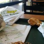 Subway Sandwiches in Naples