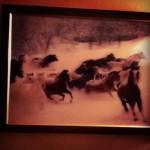 The Great Maharaja Restaurant in Winnipeg