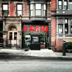Flatbush Farms in Brooklyn