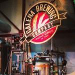 Galena Brewing Co in Galena