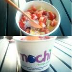 Mochi in Jacksonville, FL