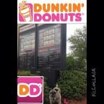 Dunkin' Donuts in Sarasota