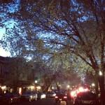 LA Mezzaluna in Princeton, NJ