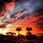 Roy's Jacksonville Beach in Jacksonville Beach, FL