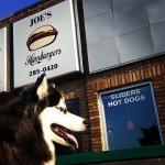 Joe's Hamburgers in Wyandotte, MI