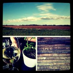 Vine Wine and Cafe in Greenport