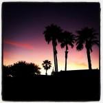 Cuys Baja Broiler in Tucson