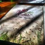 Root Cellar Cafe in San Marcos, TX