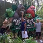 Rainforest Cafe - A Wild Place To Shop And Eat, Disney's Animal Kingdom in Orlando