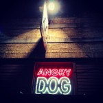 Angry Dog in Dallas, TX