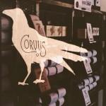 Corvus Coffee Roasters in Denver