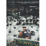 Starbucks Coffee in Tampa