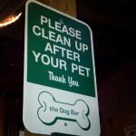 Dog Bar in Charlotte