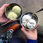 Van Leeuwen Artisan Ice Cream in Brooklyn