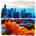 Alma in Brooklyn
