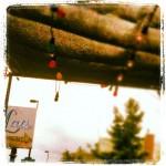 Lou's Food Bar in Denver, CO