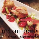 Urban Belly in Chicago, IL