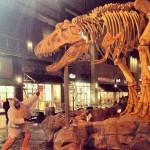T-Rex Cafe - Kansas City in Kansas City