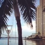 Il Gabbiano in Miami, FL
