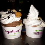 Yogurtland in Huntington Beach